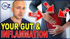 URGENT Signs & Symptoms of Gut Inflammation